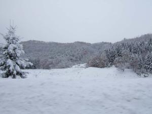 冬の訪れ2007 001
